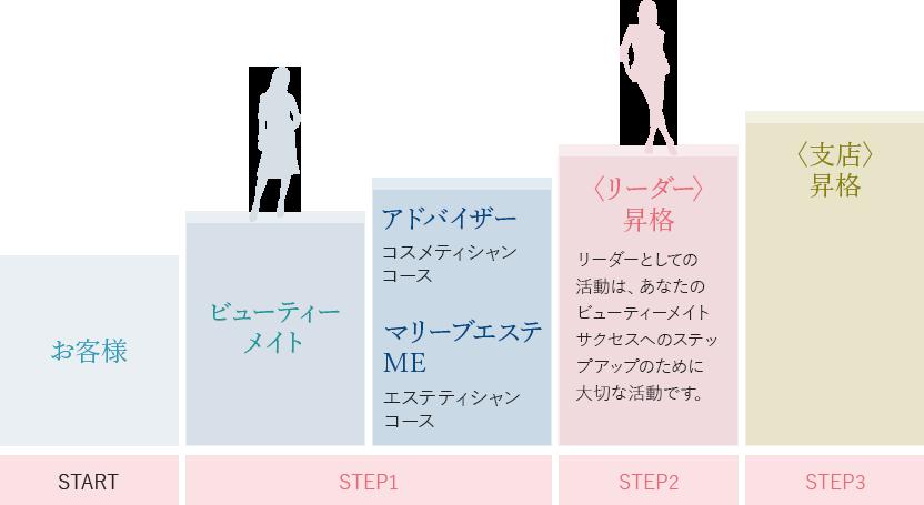 マリーブ化粧品・サクセスガイド